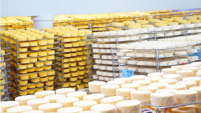 visitar fabrica queijo frances