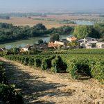 Conhecer Chmpagne - Tour Abadia Dom Perignon