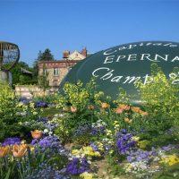 Visitar Epernay - Roteiro privativo Champagne